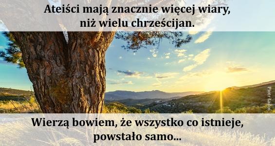 rozne-pl-02